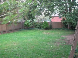 Задний двор (бэкярд) в доме в Торонто